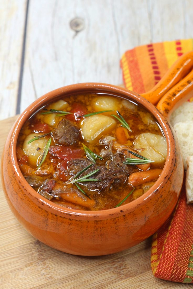 Instant Pot Roast Soup