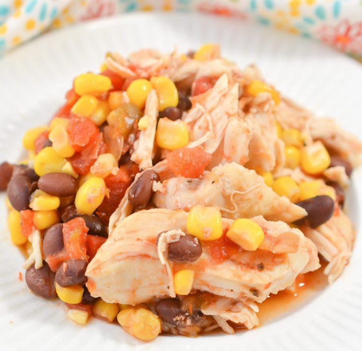 Dump and Bake Salsa Chicken
